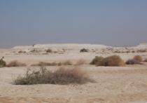 Террористический заповедник Синай - история перерождения