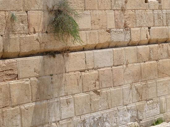 Новые открытия на раскопках в туннелях у Стены плача в Иерусалиме