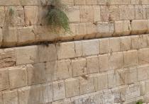 У Стены плача найдена уникальная глиняная печать периода Первого Храма